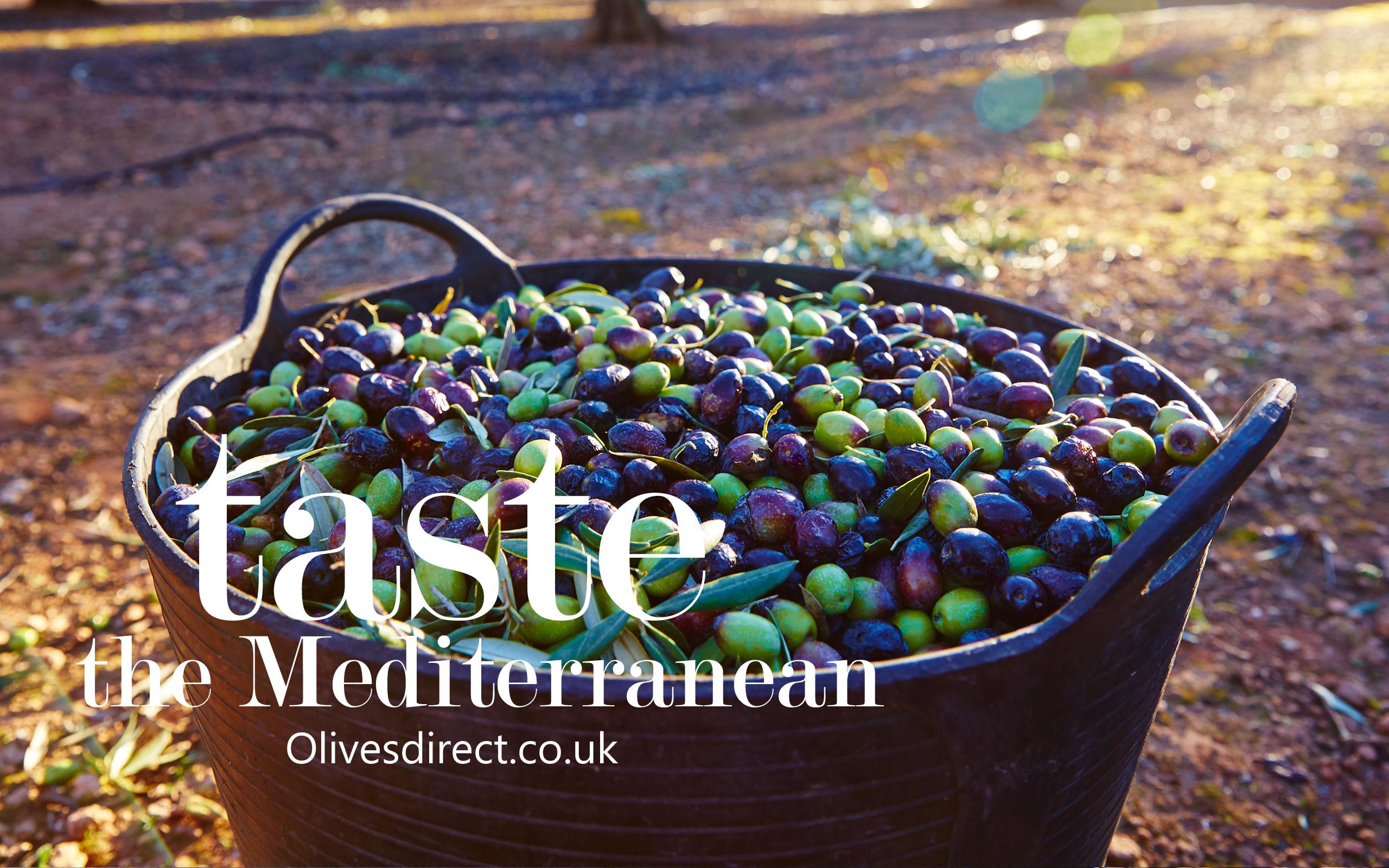 Freshest Olives