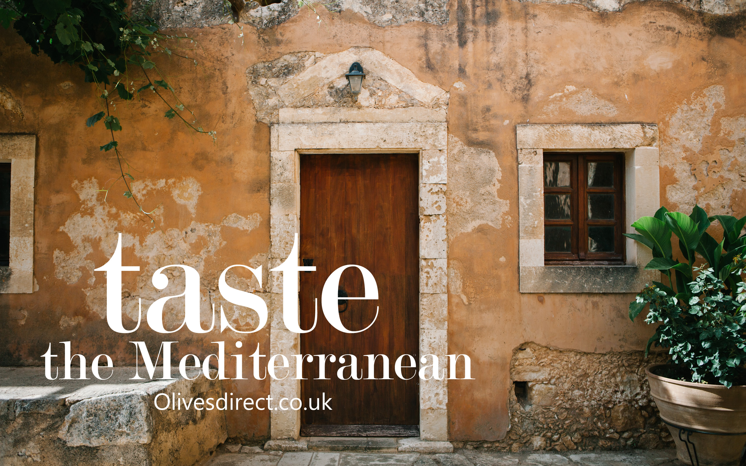 Taste the Mediterranean